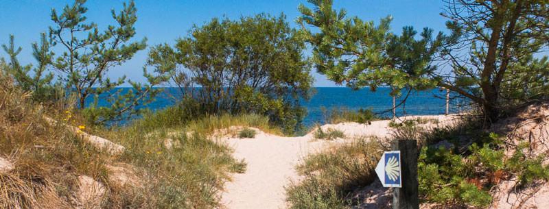 Sand und Wasser mit Wegzeichen des pommerschen Jakobswegs