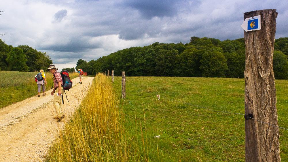 Hans-Jörg schaut zurück, ein Feldweg und als Wegzeichen die Jakobsmuschel auf einem Pfosten rechts